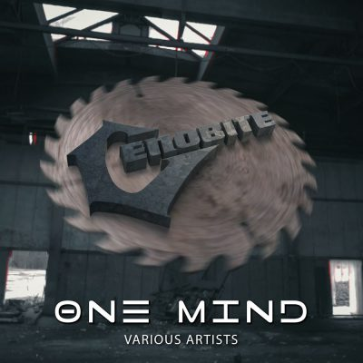 vinyl one mind